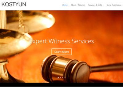 JanKostyun.com – Expert Witness Services